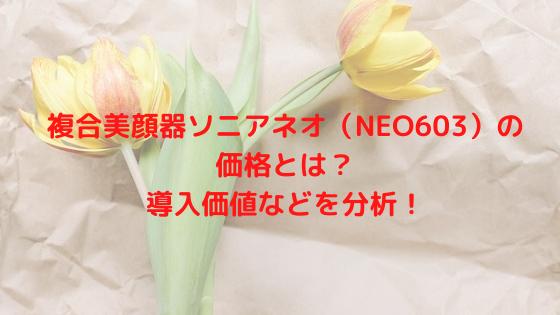 複合美顔器ソニアネオ(NEO603)の価格とは?導入価値などを分析!