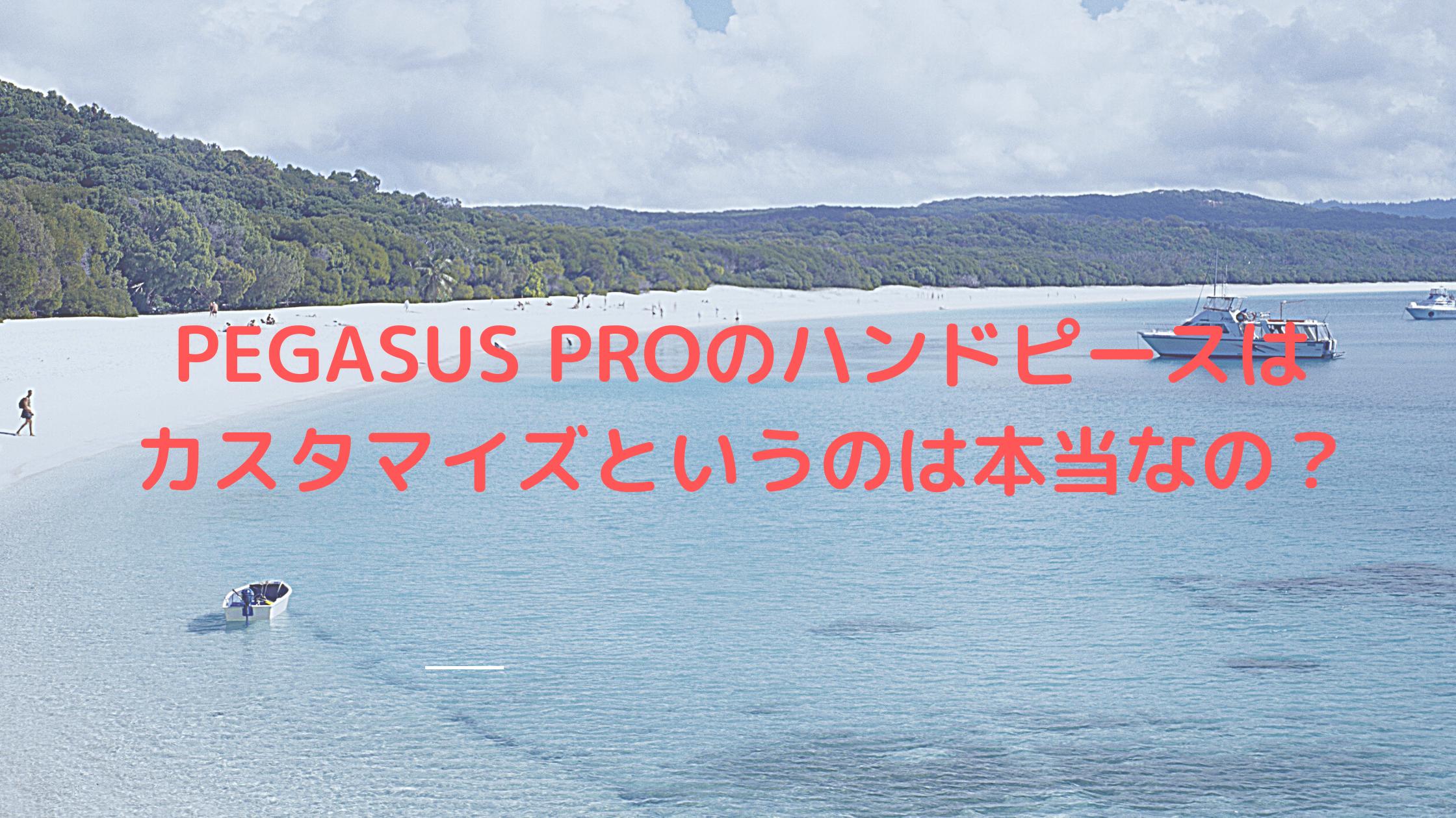 PEGASUS PROのハンドピースはカスタマイズというのは本当なのか?